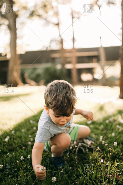 Young boy picking flowers in apartment courtyard