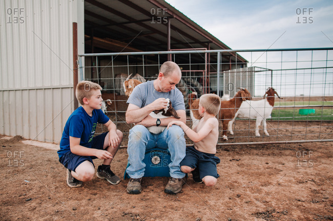A man and two boys petting baby goats