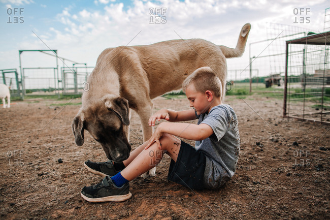 A boy playing with his pet dog