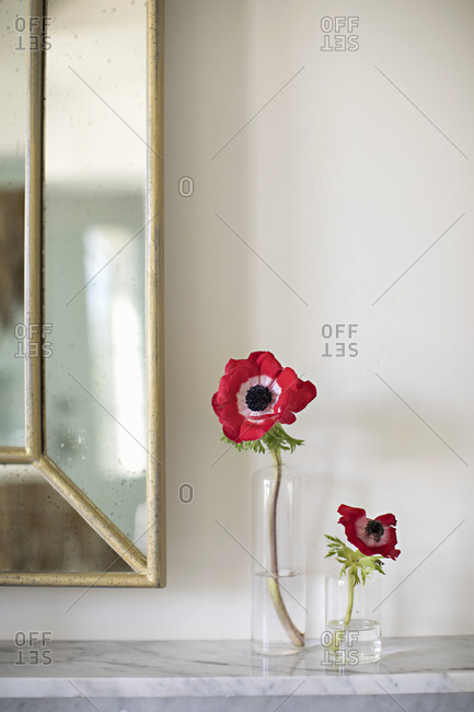 Red flowers in individual vases displayed on shelf
