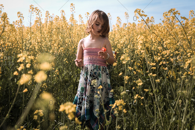 Girl stands in the middle of yellow flowers