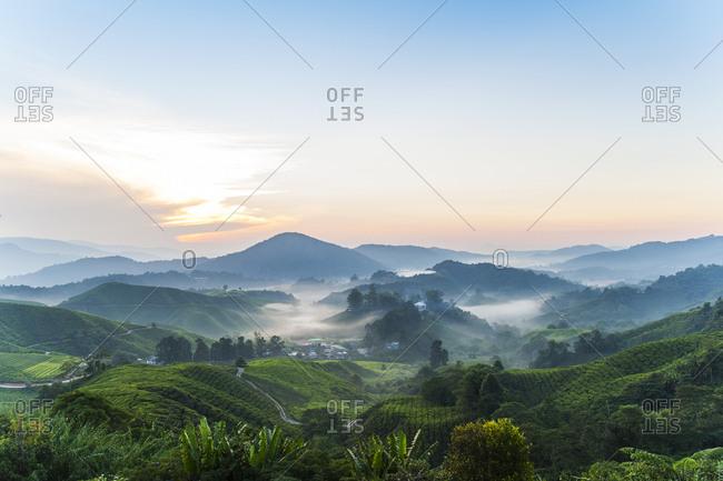 Hazy sunset view of Malaysian Cameron Highlands