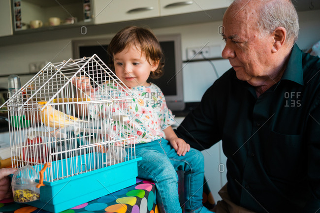 Grandfather spending time with young granddaughter at home