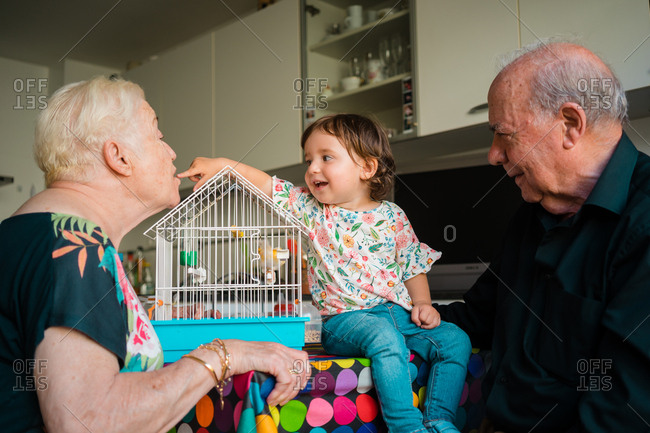Grandparents sitting with young granddaughter and bird in cage