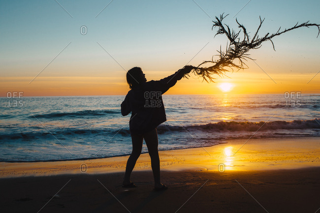 Silhouette of person waving long strand of seaweed in front of beach sunset