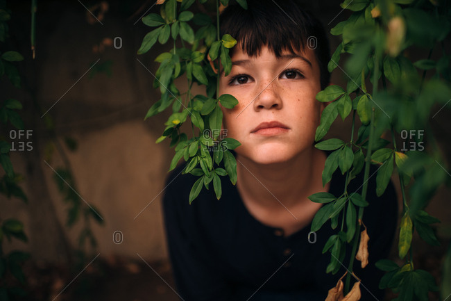 Boy looking through hanging leaves deep in thought