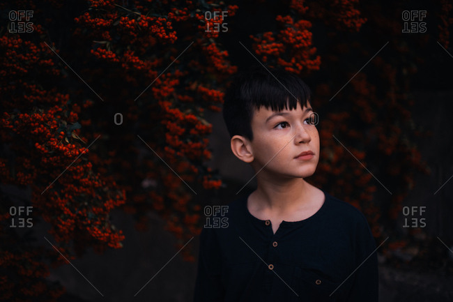 Young boy staring off camera in berry patch