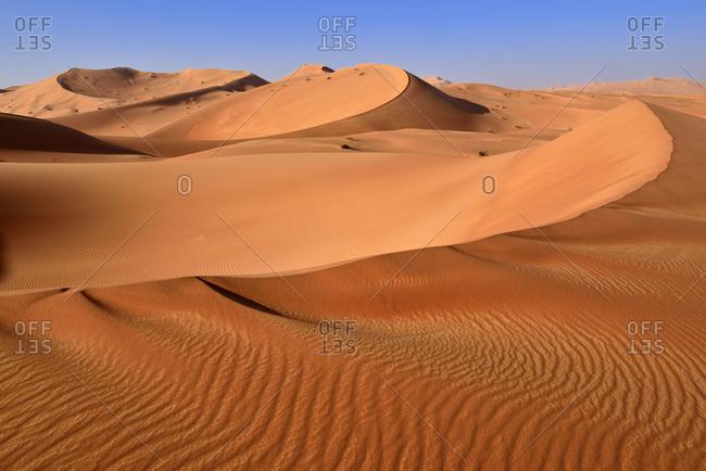 Oman- Dhofar- sand dunes in the Rub al Khali desert