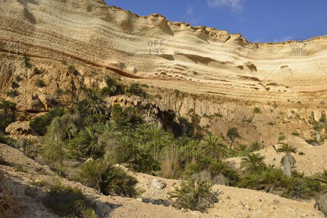 Oman- Dhofar- limestone canyon of Wadi Shuwaymiyah