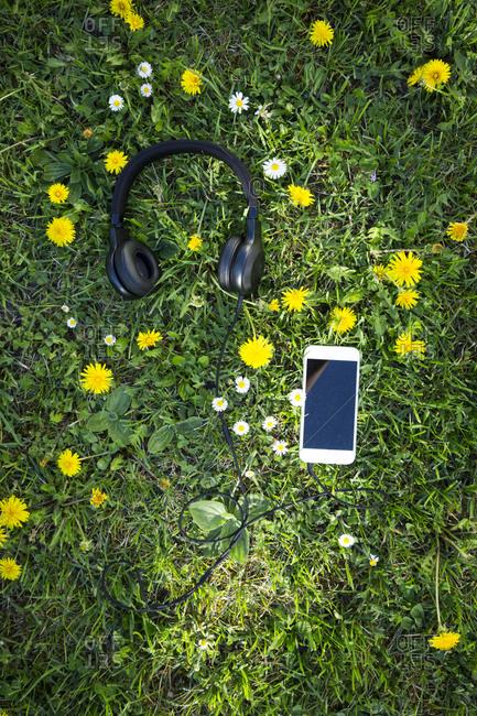 Headphones and smartphones on flower meadow