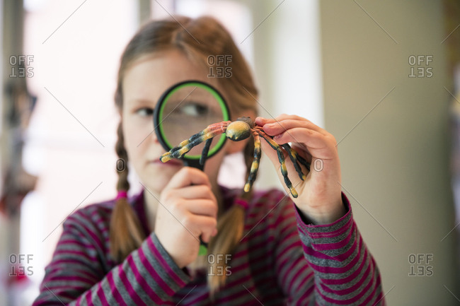 Girl examining fake spider with magnifying glass