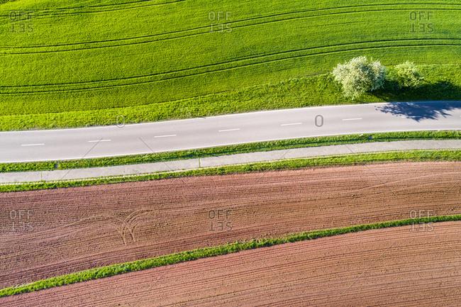 Germany- Baden-Wuerttemberg- Swabian Franconian forest- Rems-Murr-Kreis- plowed field and road