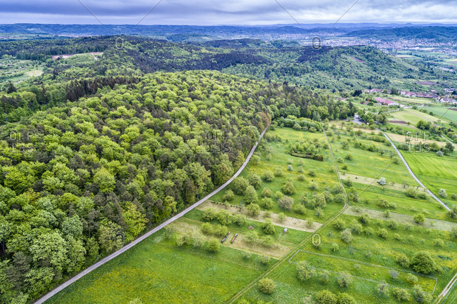 Germany- Baden-Wuerttemberg- Swabian Franconian forest- Rems-Murr-Kreis- Aerial view of meadow with scattered fruit trees and roads