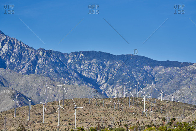 Wind mill farm in California