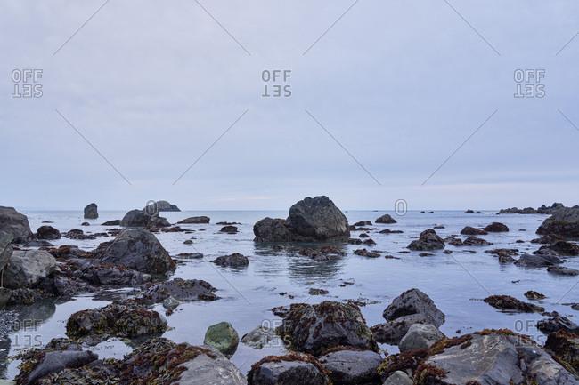 Rocky coast in California