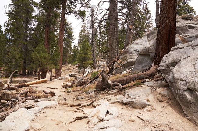 Landscape of Santa Rosa and San Jacinto Mountains National Monument, California
