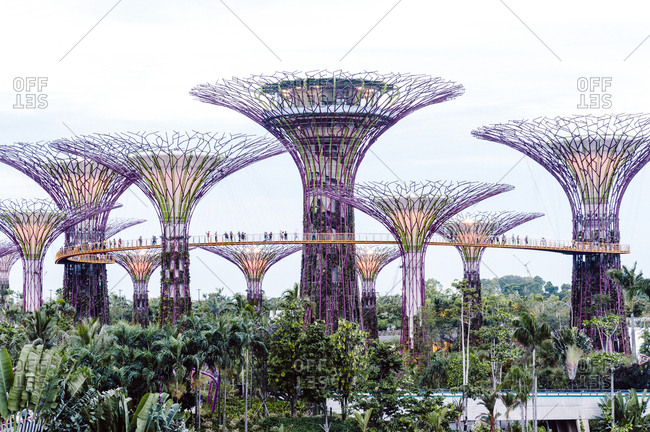 Singapore - July 18, 2012: Supertree Grove at Gardens by the Bay