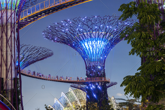 Singapore - July 18, 2012: Lighted Supertree Grove in Gardens by the Bay at night