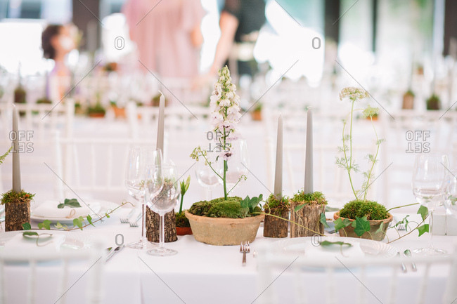 Natural centerpieces on set table at a wedding reception