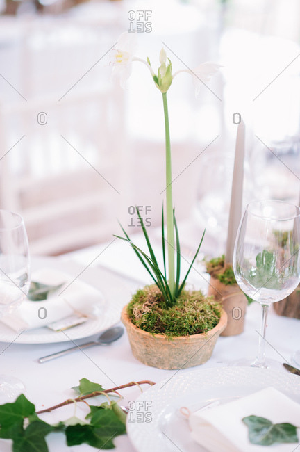 Rustic floral centerpieces on set table at a wedding reception