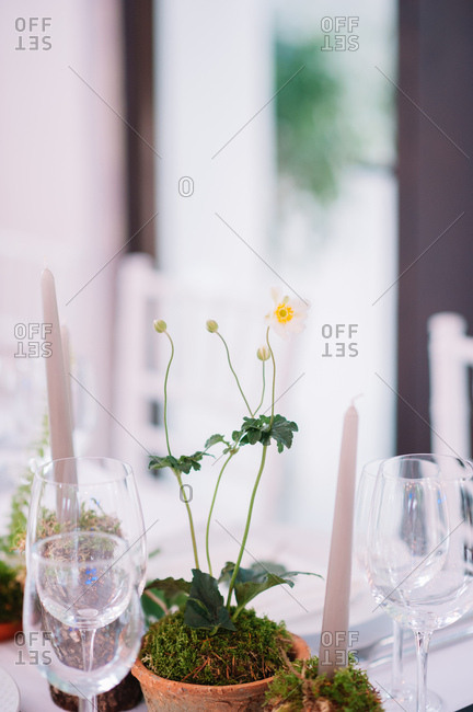 Rustic flower centerpieces on set table at a wedding reception