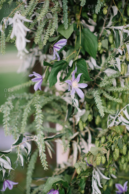 Floral wedding d�cor