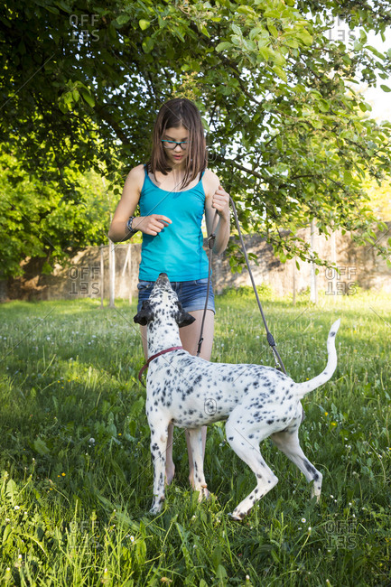 Girl teaching Dalmatian in the garden