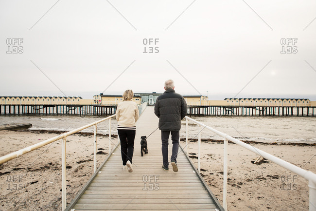 Full length rear view of senior couple walking with Schnauzer on boardwalk at beach against clear sky