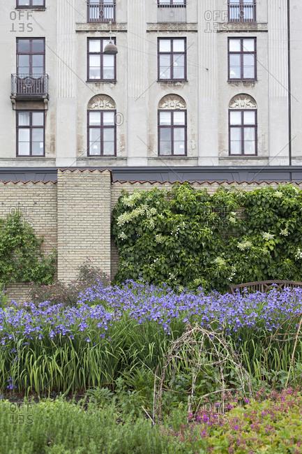 Garden flowers in front of quaint building exterior