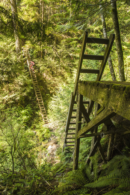 Backpacker climbing ladders while hiking along West Coast Trail, British Columbia, Canada