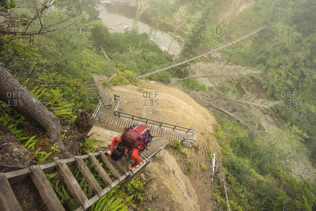 Backpacker climbing ladder while hiking along West Coast Trail, British Columbia, Canada