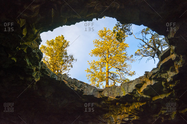Ceiling hole of lava tube, Grants, New Mexico, USA