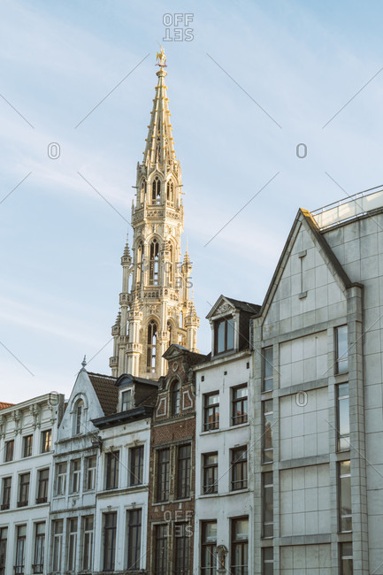 Historic townhouses and town hall in background, Brussels, Belgium