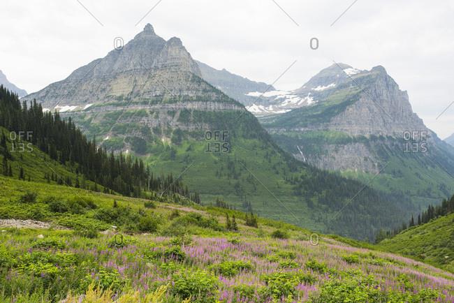 Mountain peak in Montana - Offset
