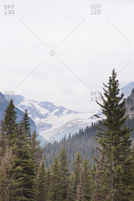 Snowy hills in Glacier National Park