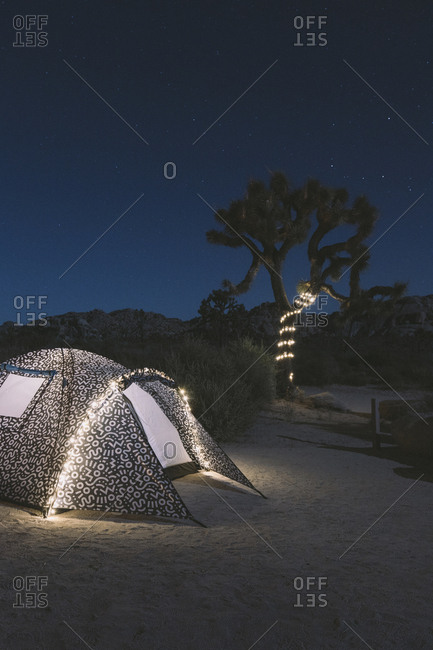 Illuminated tent on desert against sky at Joshua Tree National Park during night