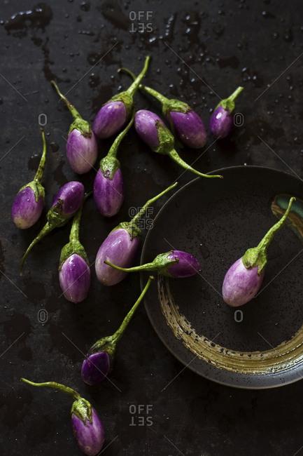 High angle view of eggplants on wet metallic table