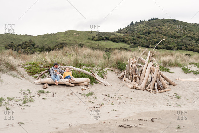 Father and daughter relaxing with dog on driftwood on a beach