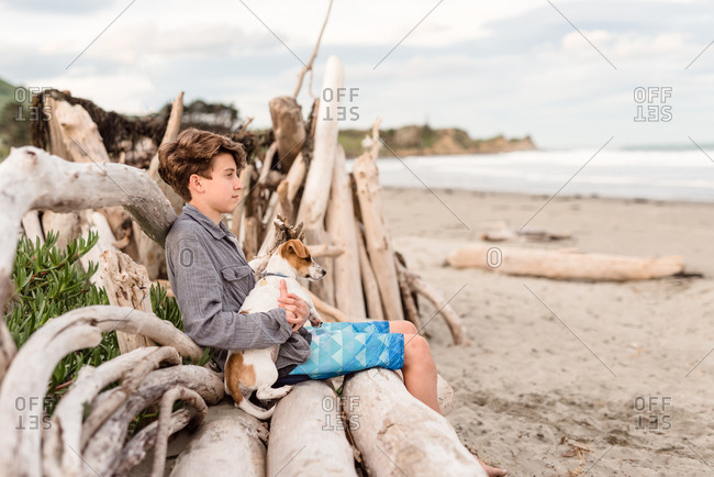 Boy sitting on driftwood with dog looking out at ocean