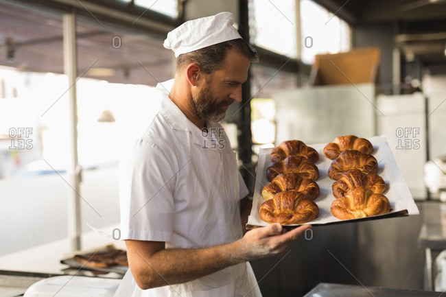 Mature male baker holding tray of crescent rolls in bakery shop