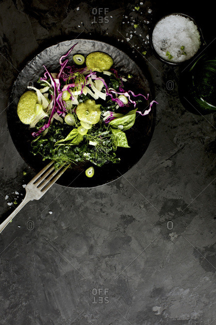 Kale Fennel Salad with Lemon Basil Pesto Vinaigrette photographed on a black background.