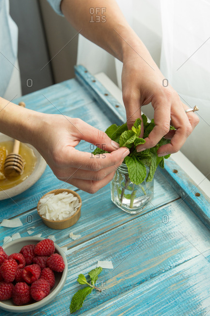 Close up of woman's hands tearing mint leaf off stalk at kitchen counter