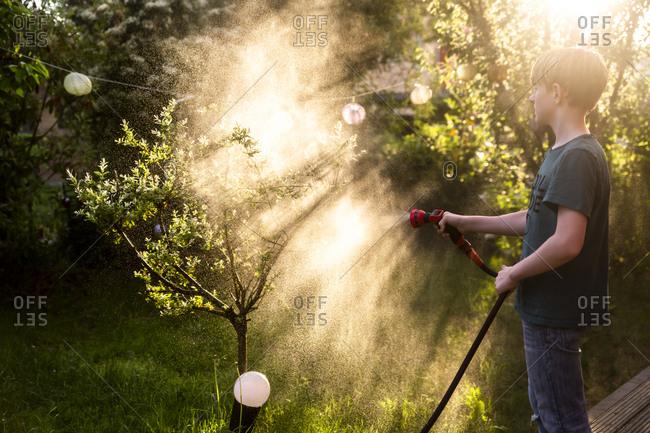 Boy using garden hose for watering tree in the garden