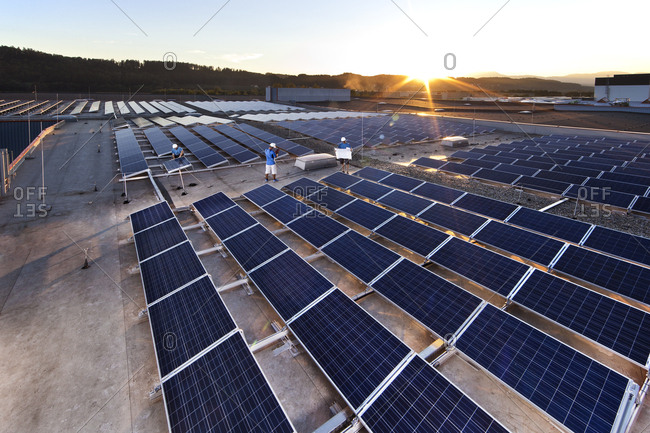 Workers mounting solar plant