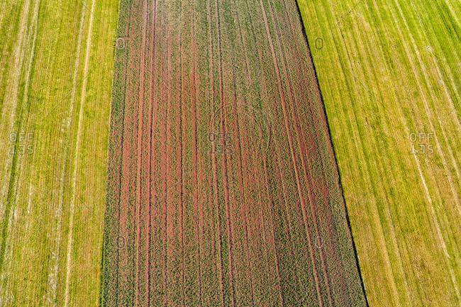 Germany- Baden-Wuerttemberg- Rems-Murr-Kreis- Aerial view of fields