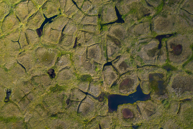 Natural polygonal shapes appear across the tundra landscape as a result of permafrost melt