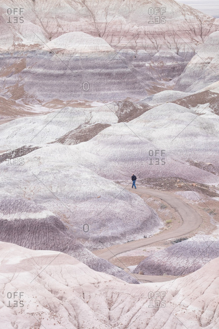 Hiker in the Blue Mesa region of Petrified Forest National Park