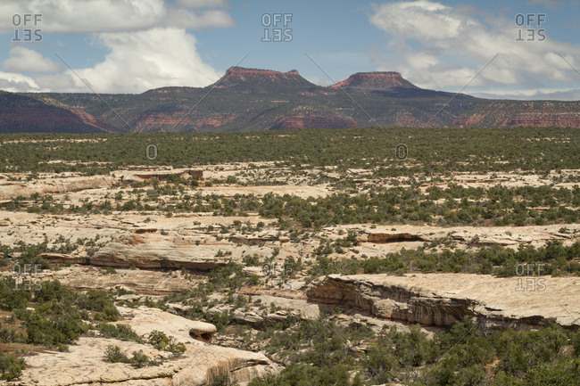 A view of the Bears Ears Buttes from a remote location in the backcountry