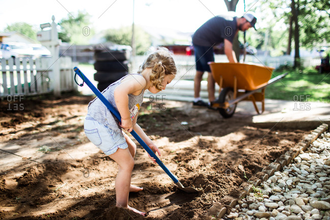 Little girl helping father dig in front yard