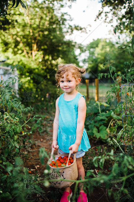 Girl holding bag of fresh picked tomatoes in a garden